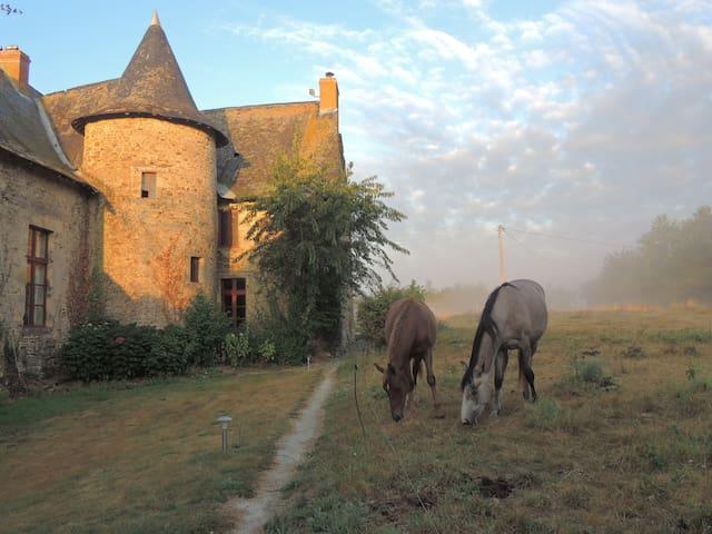 le  gite  des  jarsais - Arbrissel - Ház