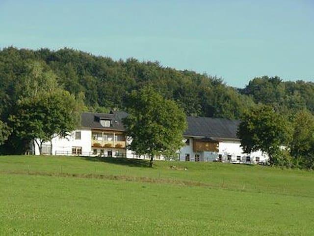 Urlaub auf dem Aussiedlerhof - Hüttingen bei Lahr - Daire
