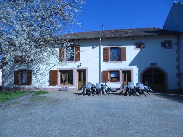 Gîte Jonquille près de Gérardmer 14 personnes - Aumontzey - Hus