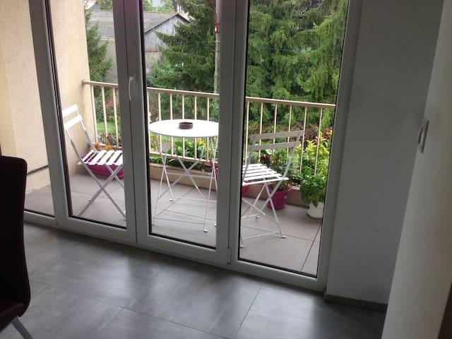 Appartement 60M2 rénové + Garage - Metz - 아파트