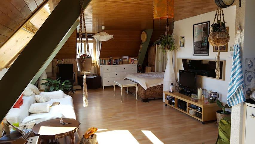Cozy Attic with roof top - Rorschach - Lägenhet