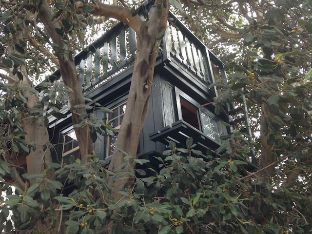 Treehouse Adventure - Бри - Домик на дереве