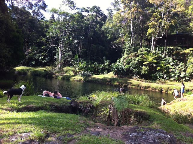 Anahata Waters: 2 Rooms in a rainforest retreat - Wilsons Creek - Casa