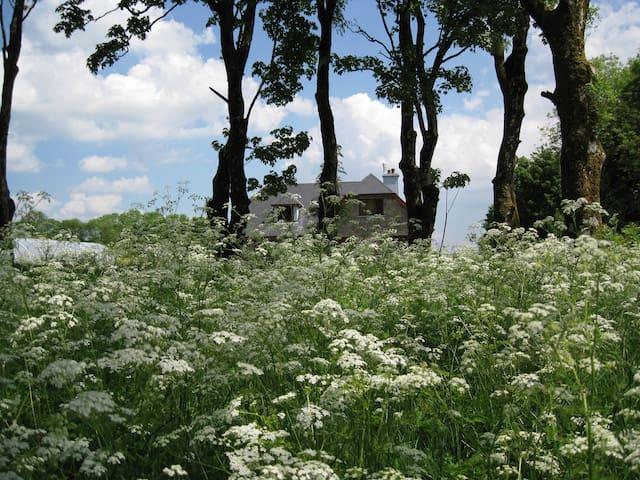wonderful house in spacious grounds - Knocknagree - Haus