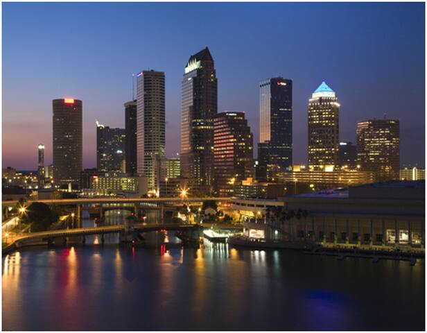 Loft-Style Apartment in Downtown Tampa - Tampa - Apartamento
