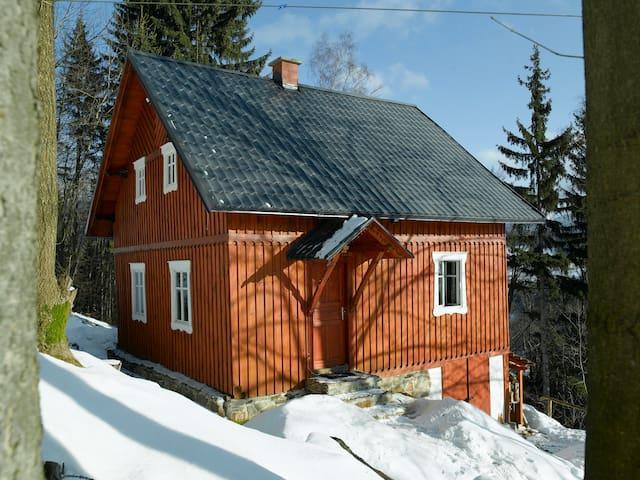 Cottage with stunning views - Paseky nad Jizerou - Alpstuga