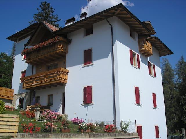 appartamento max 4 persone - Province of Trento - Leilighet