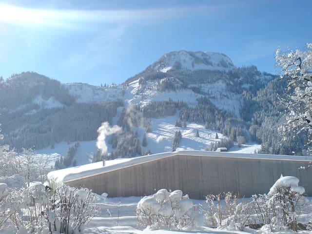 Sonniger Ausblick zum Berg - Bad Hindelang