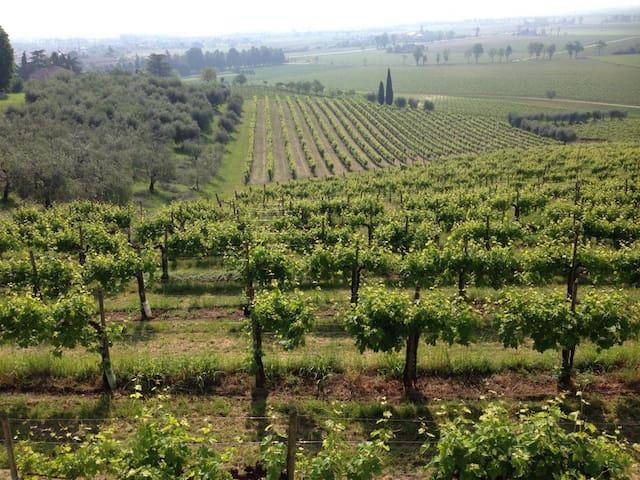 Prosecco, Alps and Venice B&B - Susegana - Dom