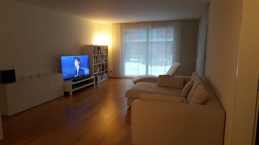Modern and nice apartment close to Basel - Rheinfelden - Appartement