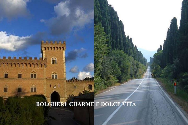 Bolgheri  charme and dolce vita - Bolgheri - Appartement