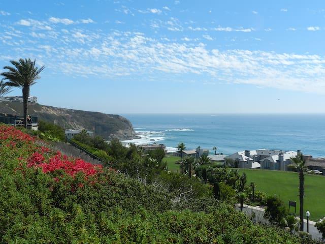 Family friendly Southern California beach retreat! - Dana Point - Lyxvåning