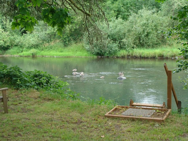 Camp Site: Way Cool Privacy by the River - Creswell - Autocaravana