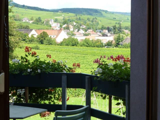 gîte charme Ribeauvillé,balcon,vue vignes 2/4 per - Ribeauville - 公寓