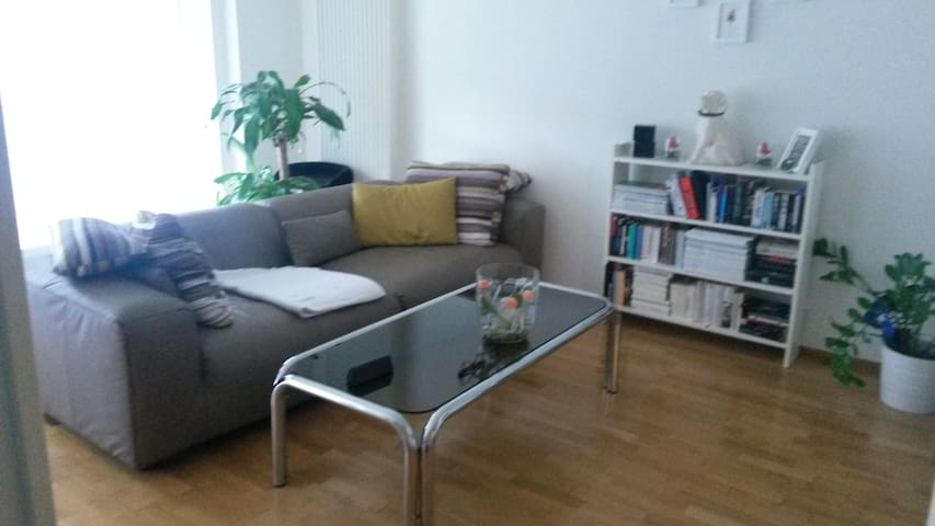 cozy 1 bedroom apartment with 2 lovely cats - Köniz