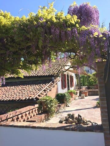 Paradis retrouvée - Castelnuovo Calcea - Дом