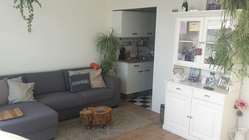 Beautiful apartment 15 minutes from oldtown - Utrecht - Appartement