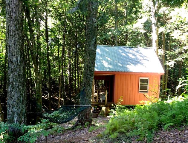 Cabin Getaway-Relax,Restore,Rejuvenate - Hyde Park - Бунгало