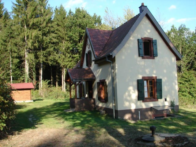 Pavillon de Chasse / Jagdhaus - Niederbronn-les-Bains - Hus