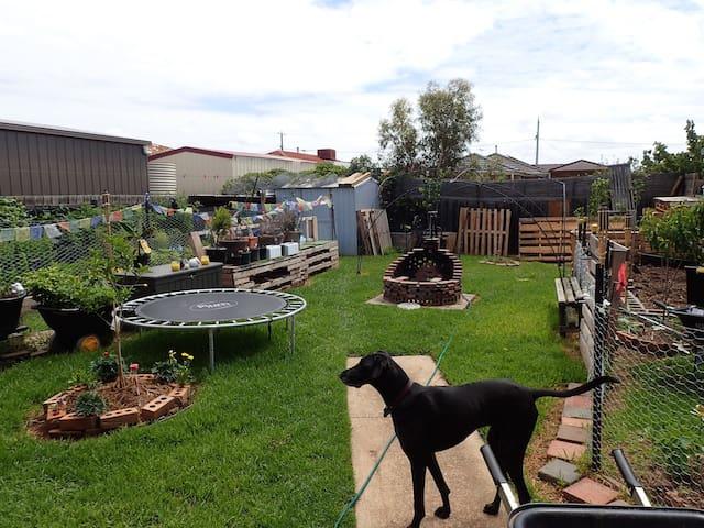 Room in eco-friendly house + garden - Altona Meadows - 獨棟