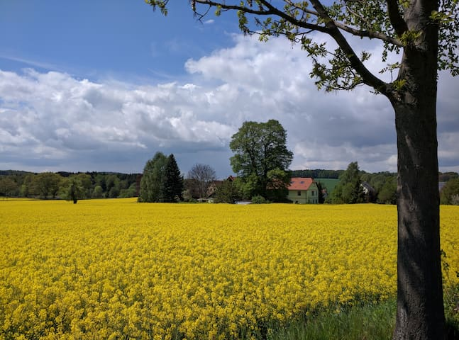 Lindenhof - mit Stil in der Natur - Schmölln-Putzkau - Lakás