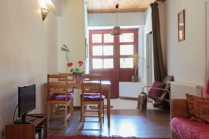 Foix apartment  garden/lovely views - Foix - Lägenhet