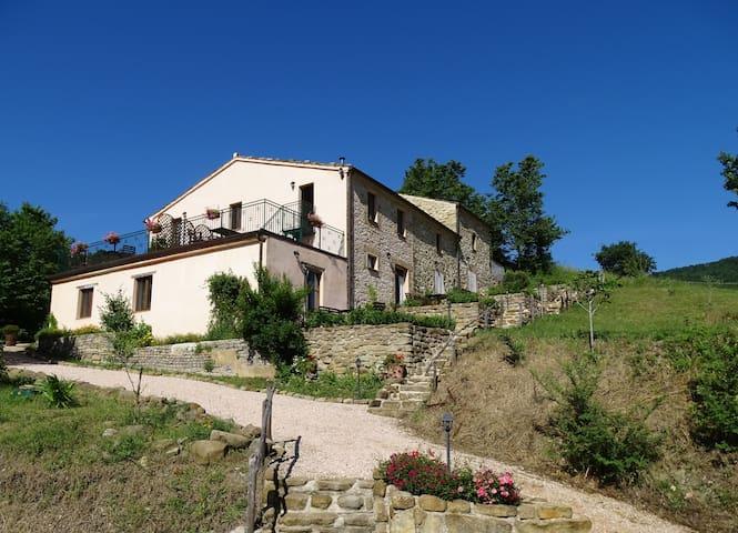 Agriturismo Carincone Italy - Pergola