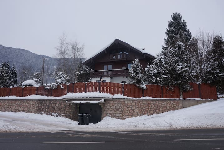 Apartment with mountain lake view! - Vorderthiersee