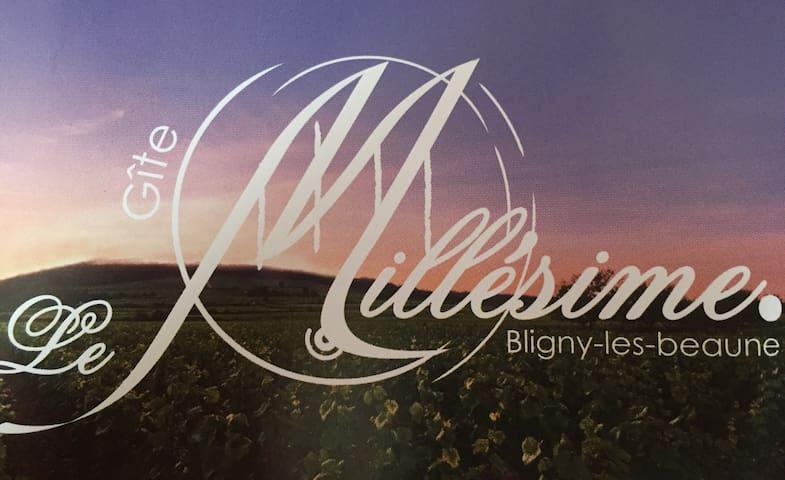Bienvenue au gîte Le Millésime ! - Bligny-lès-Beaune - Ev