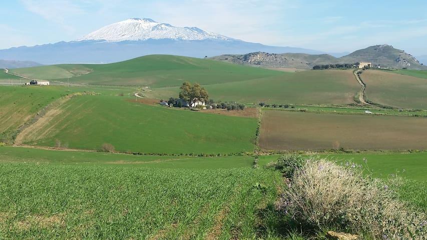 Masseria di charme Terra del Grano - Franchetto - Huis