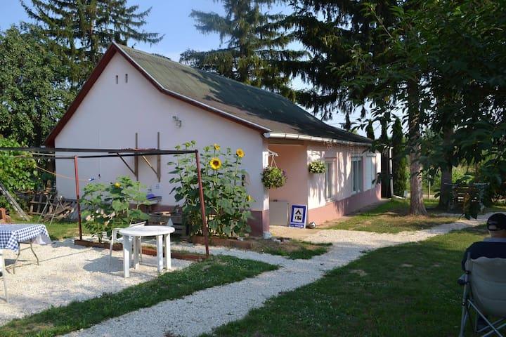 Traditional Hungarian Cottage B & B - Koppányszántó