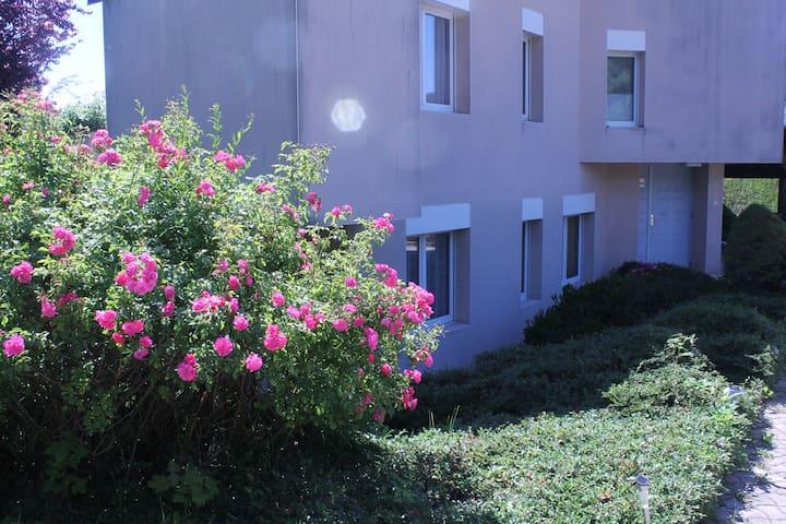 AGREABLE T2 AU CALME - Cranves-Sales - Appartement