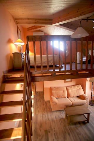 Hotel,bar-restaurante. Hab. 20 - Miranda de Arga - Bed & Breakfast
