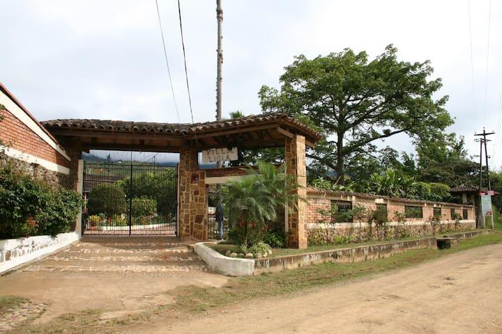 Villa Ligia Estate in El Carmen Colombia - El Carmen - Nature lodge