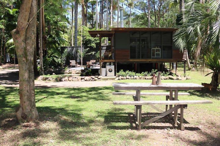Modern Eco Cabin in Rainforest  - Main Arm