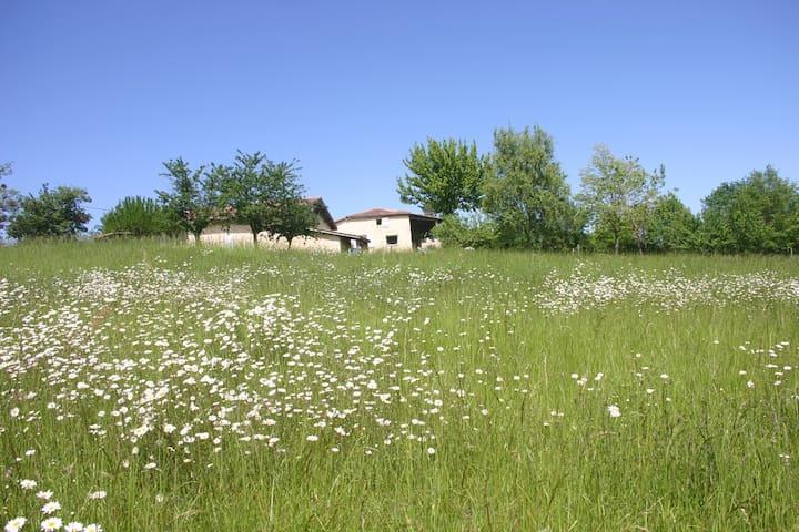 L'annexe d'Auzac - Grignols - Pension