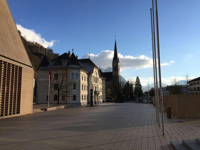 Central, mountain-view flat - Vaduz - Departamento