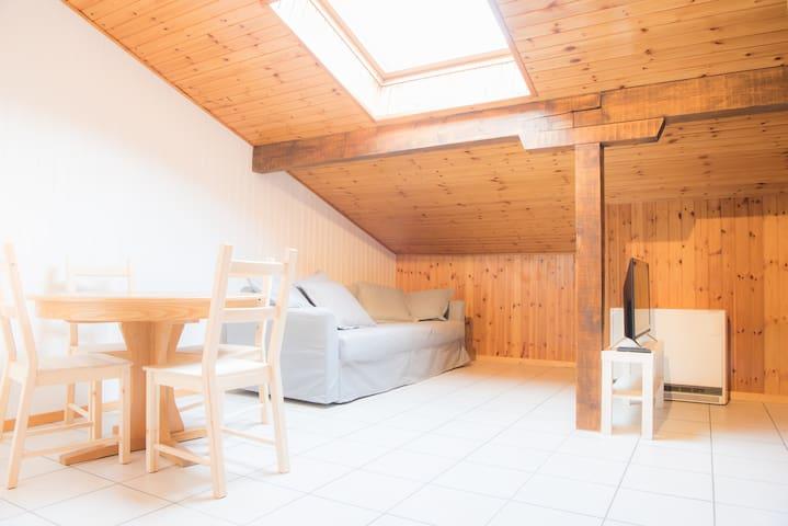 Sky & hiking studio apartment / 2 - Fiesch - Ortak mülk