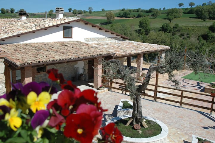 Relax in collina - Tavenna - Bed & Breakfast