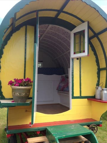 Traditional Gypsy bow top caravan - Welcombe - Andre