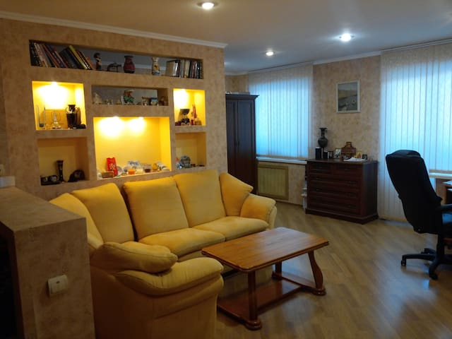 Apartment on Novo Sadovay 42 - Samara - Appartement