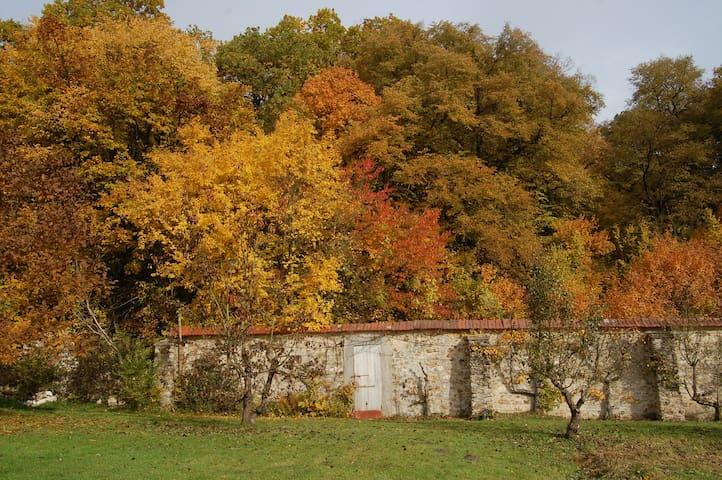 Studio au parc historique de Méridon à Chevreuse - Chevreuse - Lägenhet