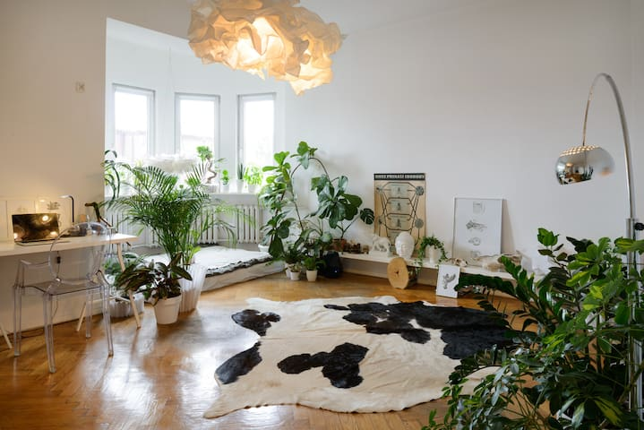 Big room in city center in modernist building - Katowice - Appartement