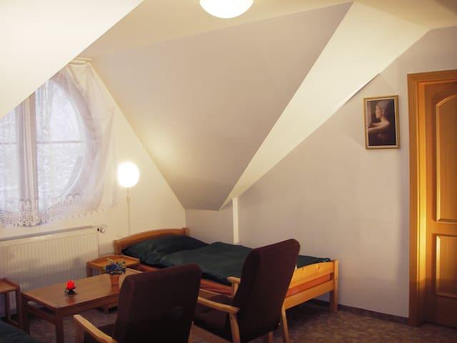 Appartement Jachymov - Jáchymov - Lägenhet