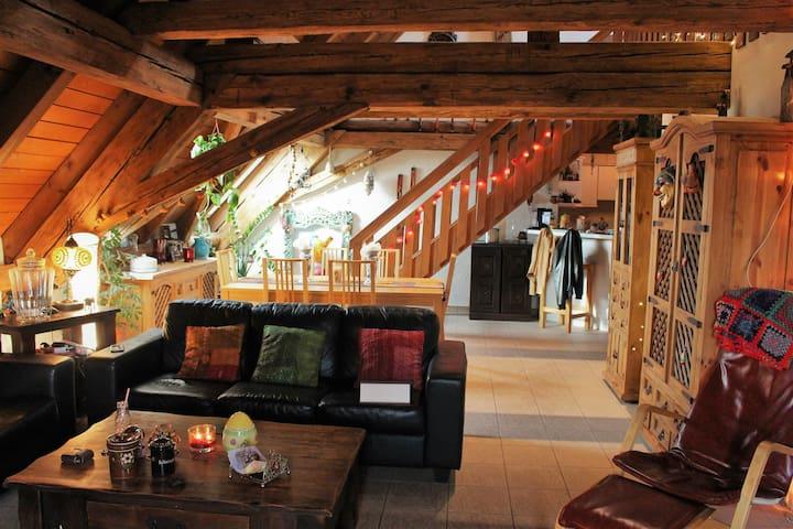 Charming apartment near the airport - Oberglatt - Lakás