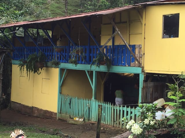 House in rainforest Virgen Sarapiqui, Costa Rica - La Virgen - Hospedaria