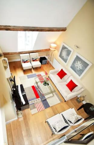 Magnificent Large Room in - Chantilly - Apartment