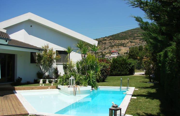 The wild olive villa - Agrilia - Villa
