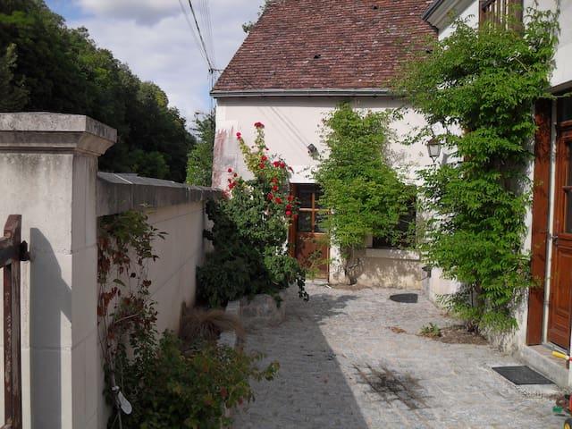 Maison de famille à proximité du zoo de Beauval - Villentrois - Villa