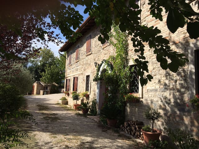 Il Gelso e l'Arcobaleno bed and breakfast - Cesolo - Bed & Breakfast